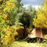 l'automne au gîte ourthane