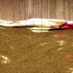 la graine du gite-Ourthane